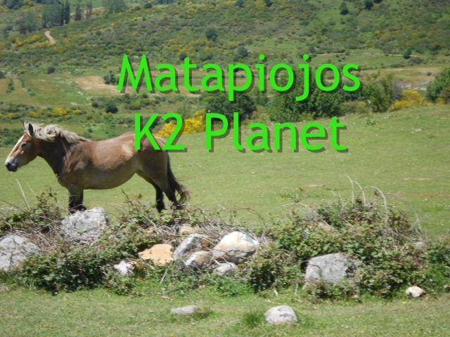 Matapiojos
