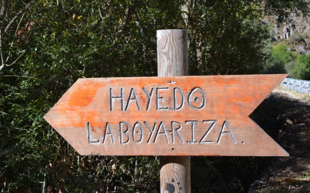 Ruta La Boyariza
