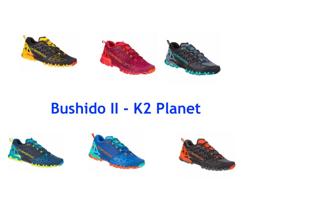 Bushido II, la evolución